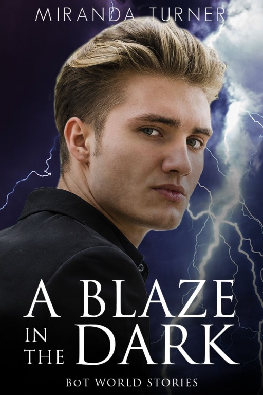 Book Cover: A Blaze in the Dark